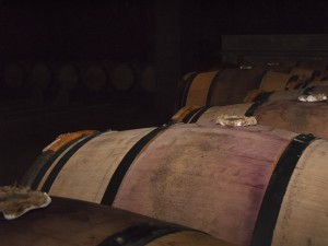 Kelder met wijnvaten op Chateau Mouton Rothshild